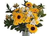 Edelweiss GJ Flowers Happy Yellow Spray Rose Bouquet 33 Stems, 24 Inches Long, with Vase (Fresh Cut Flowers)