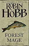 Shaman's Crossing (The Soldier Son Trilogy, Book 1): 1/3 by Robin Hobb (2008-07-01)
