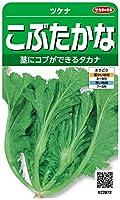 サカタのタネ 実咲野菜2872 こぶたかな ツケナ 00922872