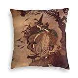 Perfect Life Hall Witch Black Cat Wicca Wiccan Star Velvet Soft Square Throw Pillow Covers Home Decor Decorations Cushion Case for Indoor Sofa Bedroom Car 18 X 18 Inch