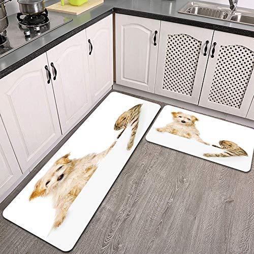 Juegos de alfombras de Cocina,Gato y Perro Encima de la Bandera Blanca,Antideslizantes Lavables de 2 Piezas Alfombra súper Absorbente