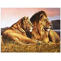 DIYペイントバイナンバー キャンバス油絵 ライオン動物 キット 子供&大人用 幅16インチ x 長さ20インチ ペイントブラシ付き diyの木製フレーム16*20