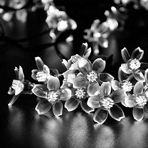 (リーダーテク)lederTEK ソーラー 防雨防水型 白色 桃花形電飾 イルミネーション LED 6.4m 50球 8点滅モデル クリスマス ガーデン ライト 新年 飾り付け