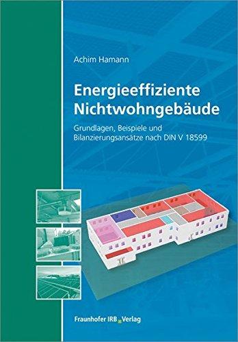 Energieeffiziente Nichtwohngebäude: Grundlagen, Beispiele und Bilanzierungsansätze nach DIN V 18599.