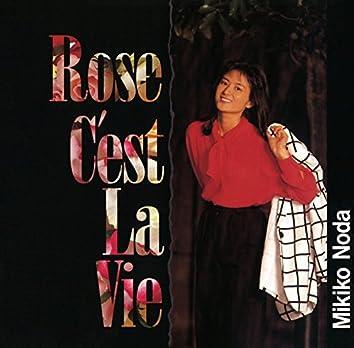 Rose C'est La Vie