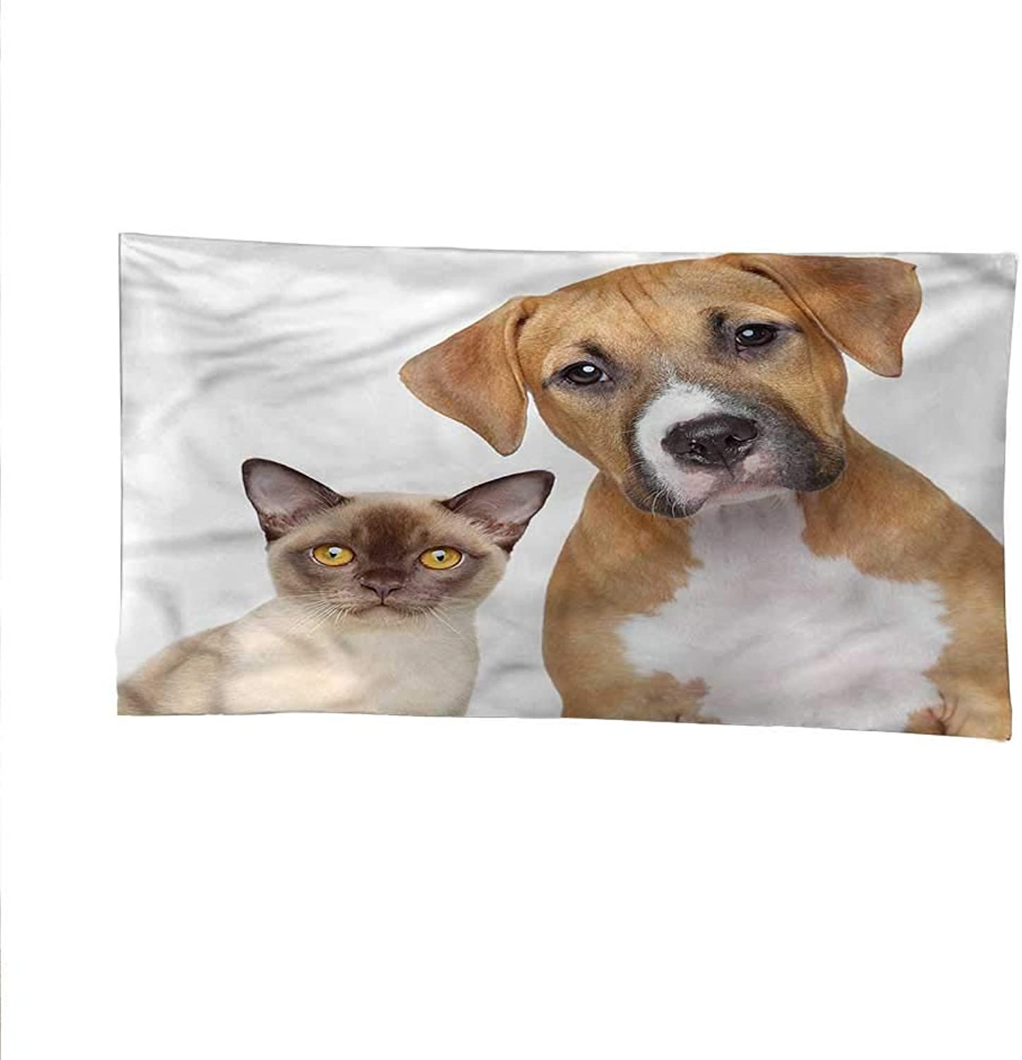 Catocean tapestrylarge tapestrySiamese Kitty and Dog Portrait 72W x 54L Inch