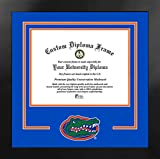 Campus Images NCAA Florida Gators Unisex Spirit Diploma Manhattan Black Frame with Bonus Lithograph, Black, One Size