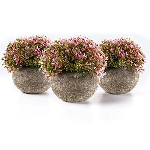T4U Plantas Artificiales Plásticas Flor Decorativa en Maceta para Oficina en Casa Rosa Paquete de 3