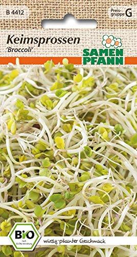 Samen Pfann B4412 Keimsprossen Broccoli (Bio-Keimsprossen)