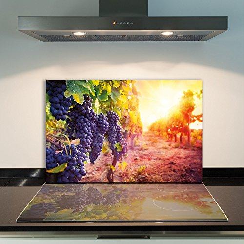 DAMU - Cubierta de vitrocerámica de 1 Pieza, 80 x 52 cm, Placas de Vidrio para Cubrir la vitrocerámica de Frutas Azules, Cocina eléctrica de inducción, protección contra Salpicaduras, Placa de Vidrio