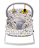 Baby Bouncers Review and Comparison
