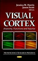 Visual Cortex: Anatomy, Functions and Injuries (Neuroscience Research Progress)