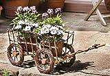 Dekoleidenschaft Gartendeko Leiterwagen aus Weide & Holz, inkl. 2 Pflanzkörbe, Bollerwagen mit Blumentöpfen