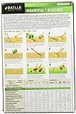 Zoom IMG-1 semillas batlle prato ornamentali e