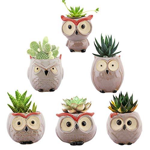Lewondr Macetas Decorativas, [6 Piezas] Suculentas Maceteros en Forma de Búho, Mini Macetas Cerámica con Drenaje para Mesa de Comedor Sala de Estar Oficina y Jardín, Multicolor