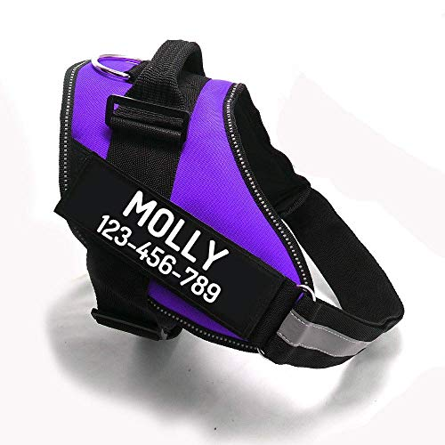 PawPawify Custom No Pull Dog Harness with Name and Phone Number, Heavy Duty Personalized Pet Vest to Prevent Tugging, Pulling, or Choking, Training and Walking
