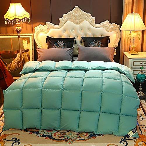 Cactuso Bettdecke 135x200 4 Jahreszeiten,Der Hotelqualität AB-AB-Version des Kerns ist solide Farbe-Tinte_200x230cm 3000g.