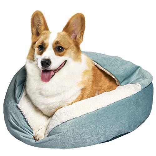 Zerohub Cozy Cuddler Kleines Hunde- und Katzenbett, luxuriöses orthopädisches Hunde- und Katzenbett mit Decke und rutschfester Unterseite, maschinenwaschbar, Grün