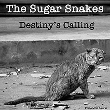 Destiny's Calling