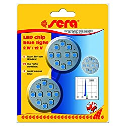 sera-LED-chip-blue-light-2-W-12-V-2-St