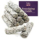 PURPLE CANYON Sage Smudge Kit - (12 Pack) - White Sage Smudge Sticks Incense Kit for Meditation Home Cleansing Aromatherapy and Smudge Rituals