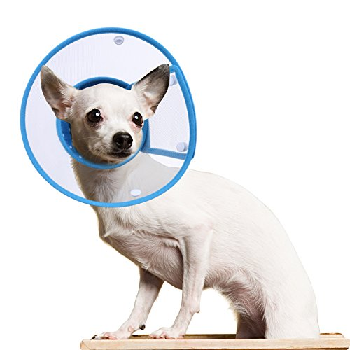 PETBABA Dog Cone Collar in Recovery, Clear Elizabethan Not Block Vision, Soft Padded E-Collar Protect Neck, Suitable Kitten Cat Puppy Pet in Surgery Remedy Grooming - M in Blue