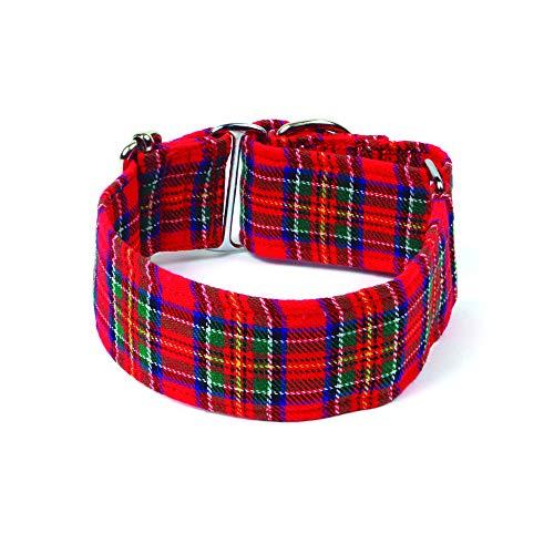 Galguita Amelie. 4cm Talla S (20 - 29cm). Collar Antiescape Escocés.