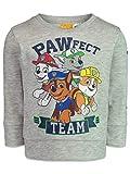 Nickelodeon Paw Patrol Toddler Boys Fleece Shirt Pullover Top Gray 4T