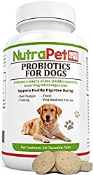 10 Best Dog Probiotics Reviews and Guide 2019