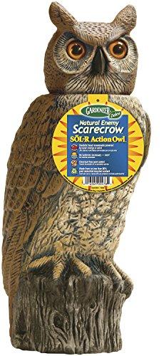 Dalen Gardeneer SRHO-4 Enemy Scarecrow SOL-R Action Owl Gardeneer by Dalen Natural Ene, 18 in, Black