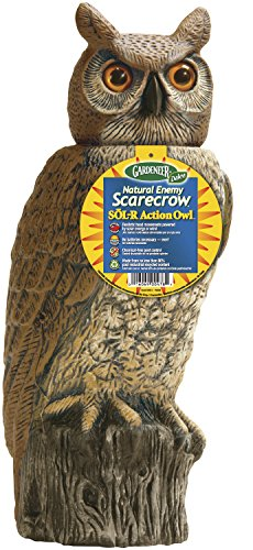 Dalen Gardeneer 100055888 Gardeneer by Dalen Solar Action Owl Natural Scarecrow Device, 18in, 18 in,...