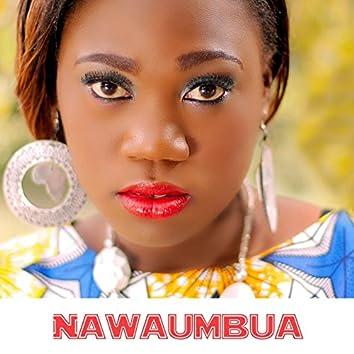 Nawaumbua (feat. Shilole)