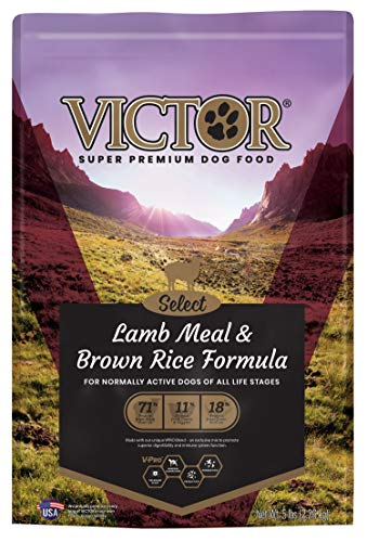brown rice protein 5lb - 7