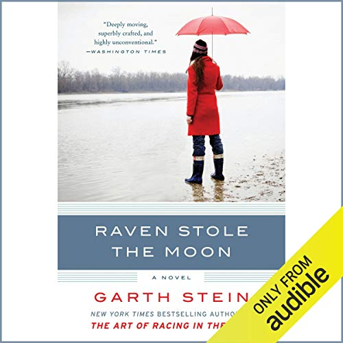 Raven Stole the Moon  By  cover art