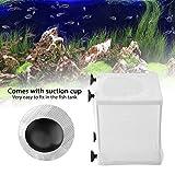 Caja de Malla de Aislamiento Multifuncional, Caja de cría de Peces, criador de Peces con Red de cría de Peces para Acuario