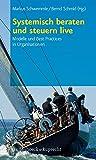 Systemisch beraten und steuern live: Modelle und Best Practices in Organisationen - Markus Schwemmle