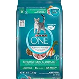 Purina ONE Sensitive Skin & Stomach