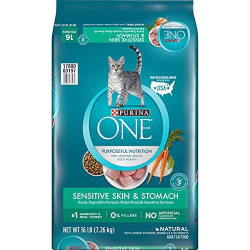 Purina ONE Natural Dry Cat Food, Sensitive Skin & Stomach Formula - 16 lb. Bag