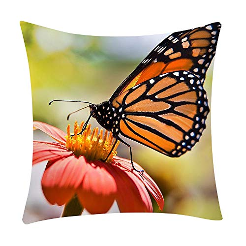 Taie d'oreiller Housses de Coussin Canapé Coussins Oreiller Carré Taie d'Oreillers Décoratif Home Decor Throw Pillow Oreiller Couvre Vintage Pillowcase Papillon Camion Feuille Vert Style 25 WINJIN