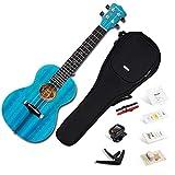 Konzert ukulele Enya EUC-25D BU 23 Zoll Blau Massiv Mahagoni
