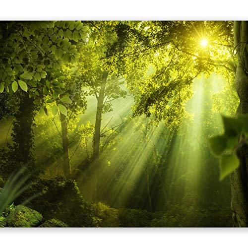 murando Fototapete Wald 350x256 cm Vlies Tapeten Wandtapete XXL Moderne Wanddeko Design Wand Dekoration Wohnzimmer Schlafzimmer Büro Flur Natur Landschaft grün c-A-0077-a-a