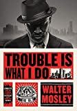 Image of Trouble Is What I Do (Leonid McGill)