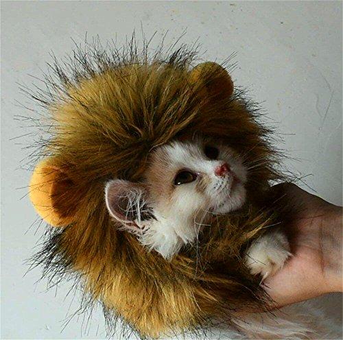 Bello Luna Lion Mane para Gato y Perro pequeño Disfraz de Gato Fancy Lion Hair para Halloween Christmas-M