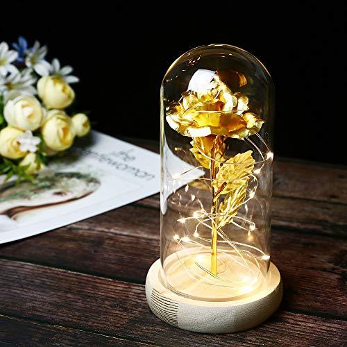 TINYOUTH Golden Rose mit Glas Lampenschirm, 2m/6.6ft 20 LED Lichterkette Warmweiß Künstliche Rose im Glas, AAA Batteriebetrieben Glaskuppel Rose für Hochzeitstag Muttertag Valentinstag Weihnachten