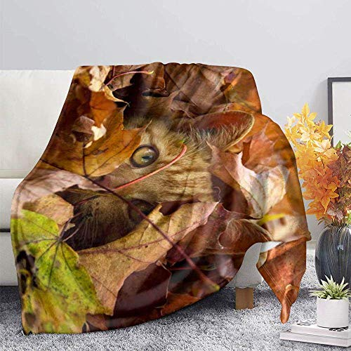 ZGZZD Sofa Throw Blankets,Winter Soft Warm 3D Print Sofa Throw Blanket Novelly Chic Khaki Maple Cat Animal Printed King Size Fluffy Blanket For Bed Couch Camping Travel,110X140Cm