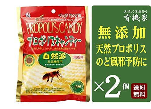 無添加 プロポリスキャンディー 80g×2個 ★ 送料無料 レターパック赤 ★ ミツバチが作る天然の防御物質プロポリスと、水飴、ハチミツ、ケイヒ液エキス、ジンジャーパウダー、ドクダミエキスを配合したのど飴。