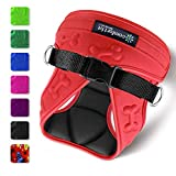 xx small puppy harness - Comfort Fit Metric USA 6.3 x 8.8-Inch Dog Harness with Padded Interior and Exterior Cushioning for Small Dogs, Small, Red