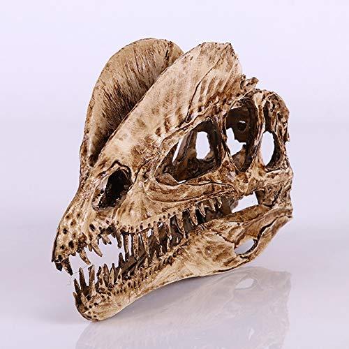 AOSUAI Dinosaurier-Schädel-Harz Macht Versteinertes Skelett Unterrichtendes Vorbildliches Halloween Home Decoration in Handarbeit
