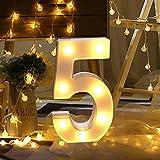 Dewanxin LED Decorativos Números Iluminados,0-9 Luminosas Decorativas con Luces LED,Números Arábigos para el Cumpleaños Fiesta de Bodas Decoración de la Barra Dormitorio Colgante de Pared(5)
