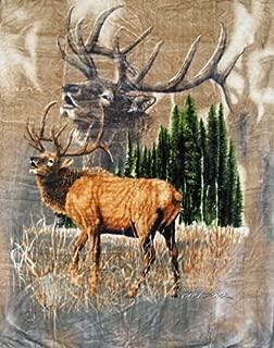 K2 6I-DVDC-GBCM Signature Blanket Elk Calls Queen Mink Korean Style, Multicolor